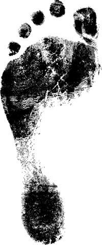 carbon-footprint-1