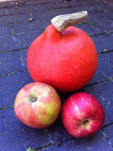 plukning af æbler