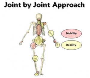 Joint-by-Joint-slide2