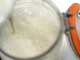 yoghurt billede
