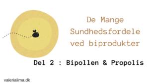De Mange Sundhedsfordele ved biprodukter: Del 2: Bipollen og Propolis