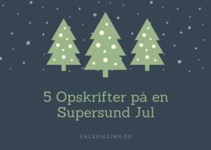 5 Opskrifter på en Supersund Jul