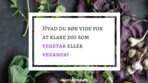 Hvad du bør vide for at klare dig som vegetar eller veganer?