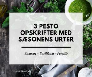3 pesto opskrifter med sæsonens urter : Ramsløg, Basilikum og Persille